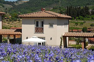 Villas Greve in Chianti