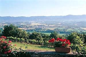 Villa mugello elegante villa con piscina in affitto sulle colline del mugello a borgo san - Piscina borgo san lorenzo ...